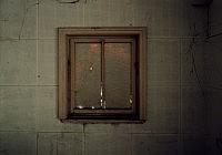 Carnap III, 2009 99×141cm