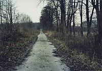 Im Bruch, 2011, 62×87cm