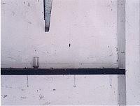 Gesolei, 2000 86×100cm